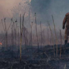 Captain Chainsaw is burning the Amazon, and the rest of the world is cheering him on.